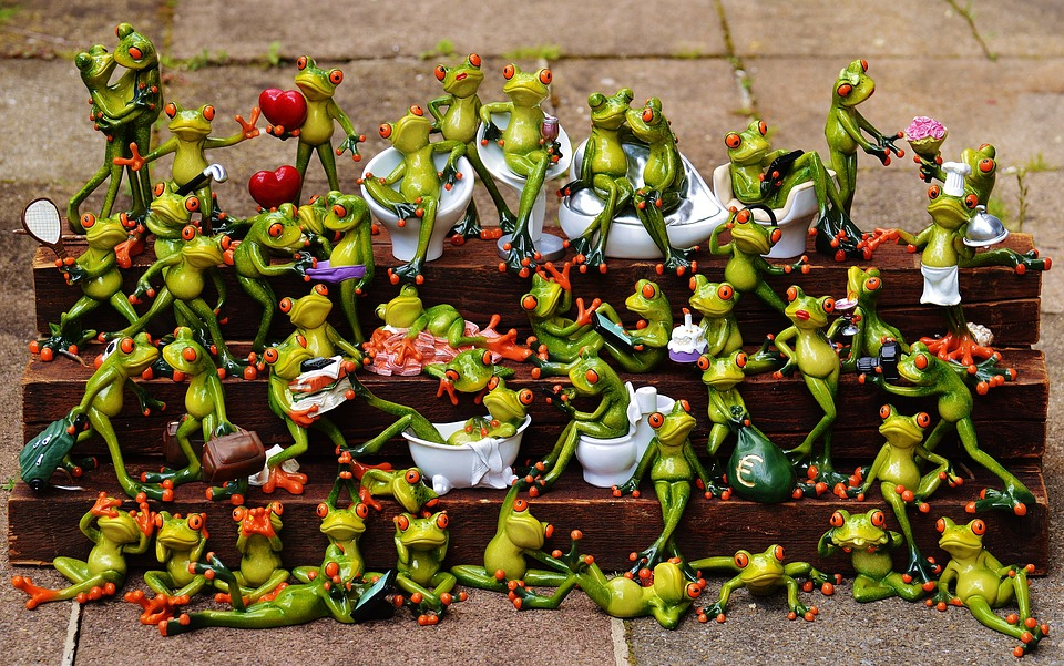 frogs-1371297_960_720